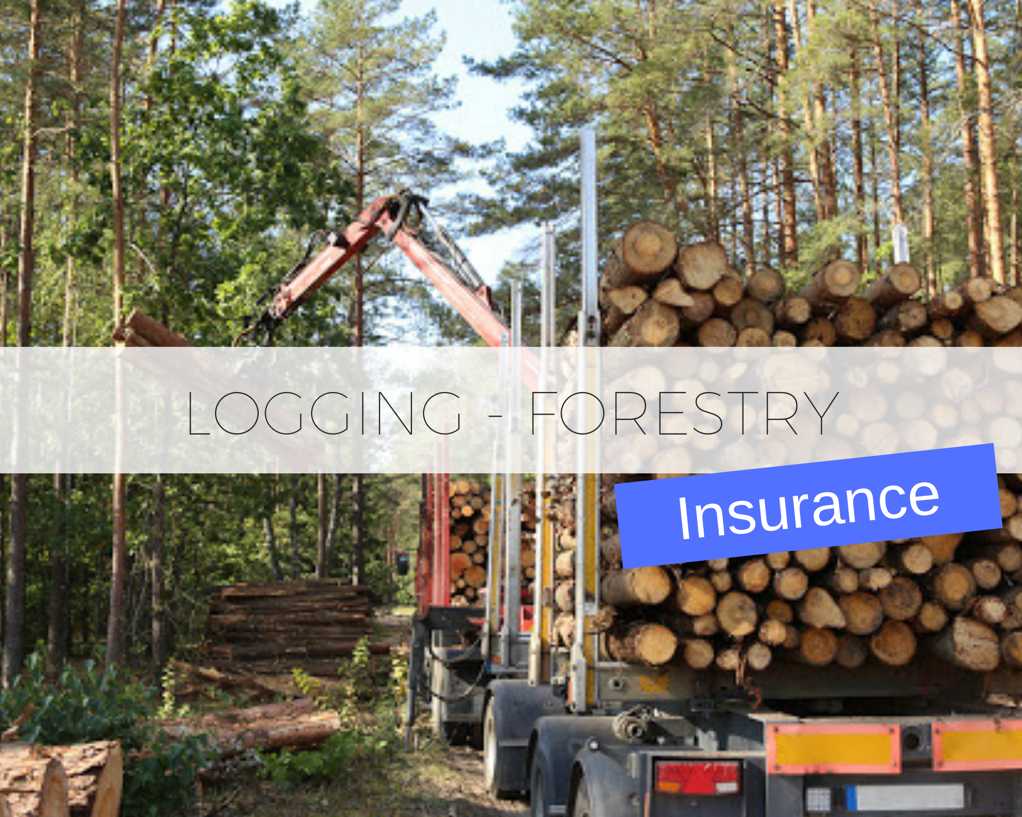 Our agency has developed relationships with the right carrier's to take care of you insurance needs in the Logging, Lumbering and Forestry Service industries.